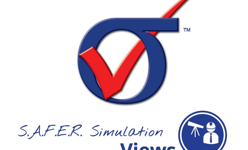 S.A.F.E.R. Simulation Views: StressCheck Basics Q&A